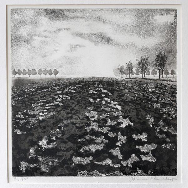titel: landschap I / afmeting: 30 x 30 cm / materiaal: ets