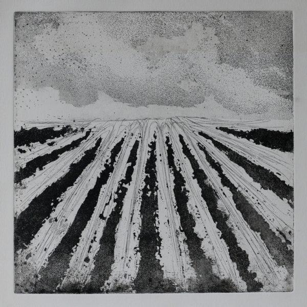 titel: landschap II / afmeting: 30 x 30 cm / materiaal: ets
