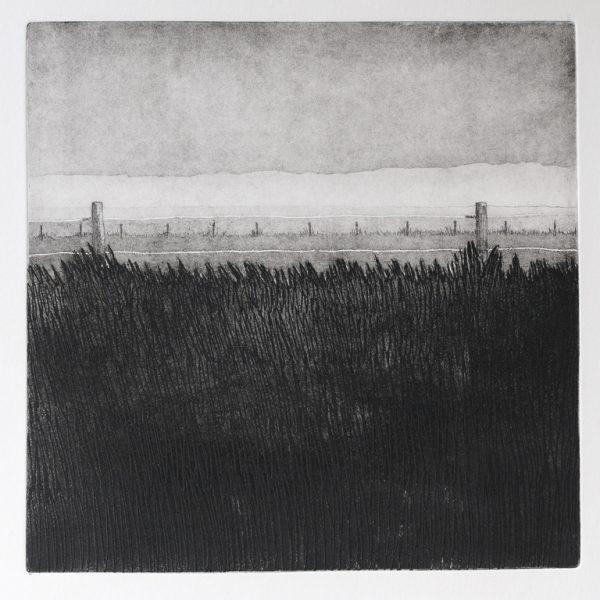 titel: landschap III / afmeting: 30 x 30 cm / materiaal: ets
