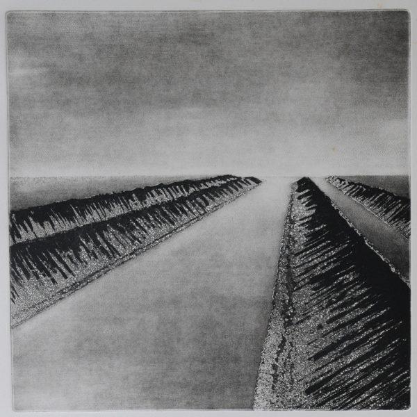 titel: landschap IV / afmeting: 30 x 30 cm / materiaal: ets