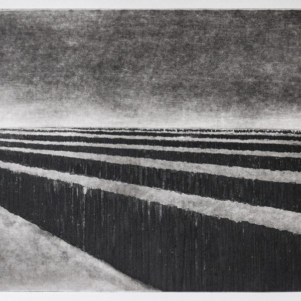 titel: landschap V / afmeting: 30 x 40 cm /  materiaal: ets